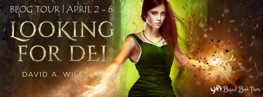 Blog Tour: Looking for Dei by David A. Willson | Tour organized by YA Bound | www.angeleya.com