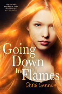 Going Down in Flames by Chris Cannon | tour organized by YA Bound | www.angeleya.com