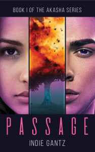 Passage by Indie Gantz | Tour organized by YA Bound | www.angeleya.com