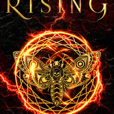 Cover Reveal: Analiese Rising by @brendadrake