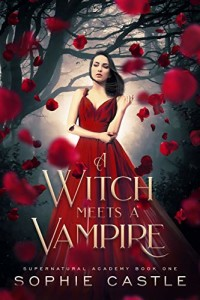 A Witch Meets a Vampire by Sophie Castle | www.angeleya.com